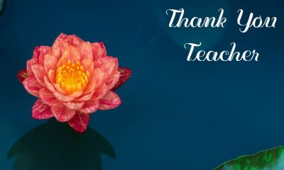 Thank You Teacher Messages and Quotes What To Say To A Teacher