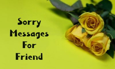 I Am Sorry Messages for Friends Apologize Texts and Notes
