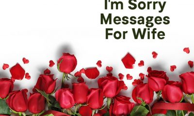 Sweet Sorry Message for Wife with Wishes Greetings Pictures