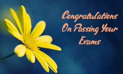 What to Write Congratulations for Passing Exam and Good Result Quotes About Appreciation Messages Wishes