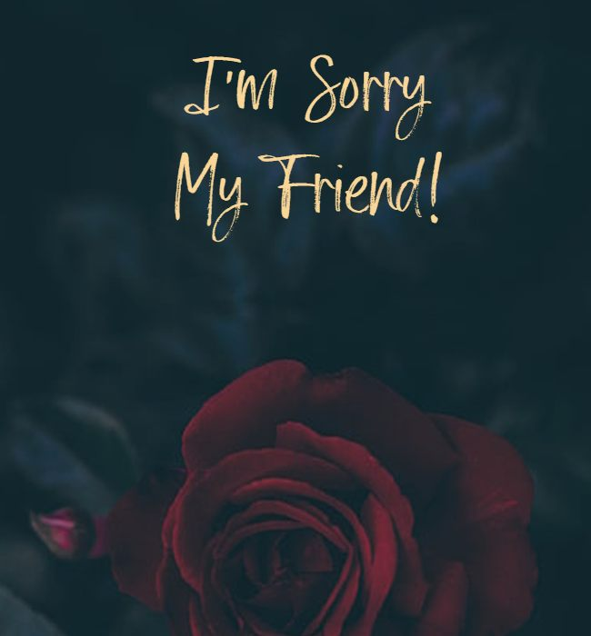 sorry msg for friend