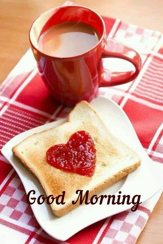 Amazing Good Morning Images Wishes With Pictures And Beautiful Positive Vibesbeautiful morning images
