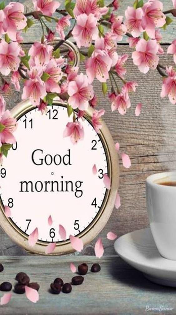 Amazing Good Morning Images Wishes With Pictures And Beautiful Positive Vibesgood morning beautiful images