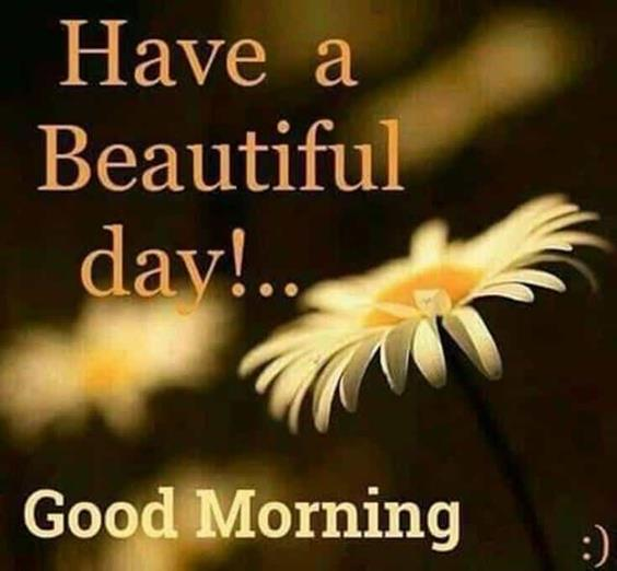 Amazing Good Morning Images Wishes With Pictures And Beautiful Positive Vibesgood morning pictures for her