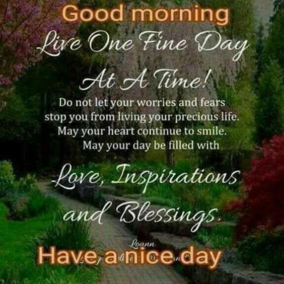 Amazing Good Morning Images Wishes With Pictures And Beautiful Positive Vibesgood morning quotes images