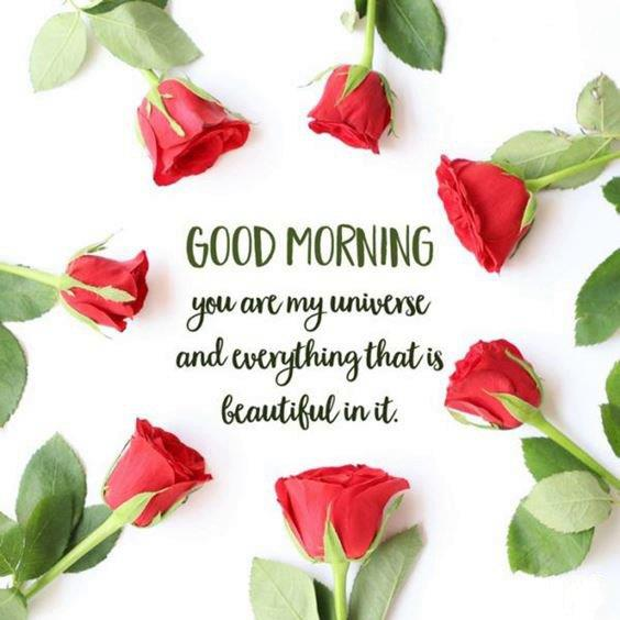Amazing Good Morning Images Wishes With Pictures And Beautiful Positive Vibeswishing you a good day images