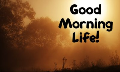 Beautiful Good Morning Life Images Sayings And Quotes