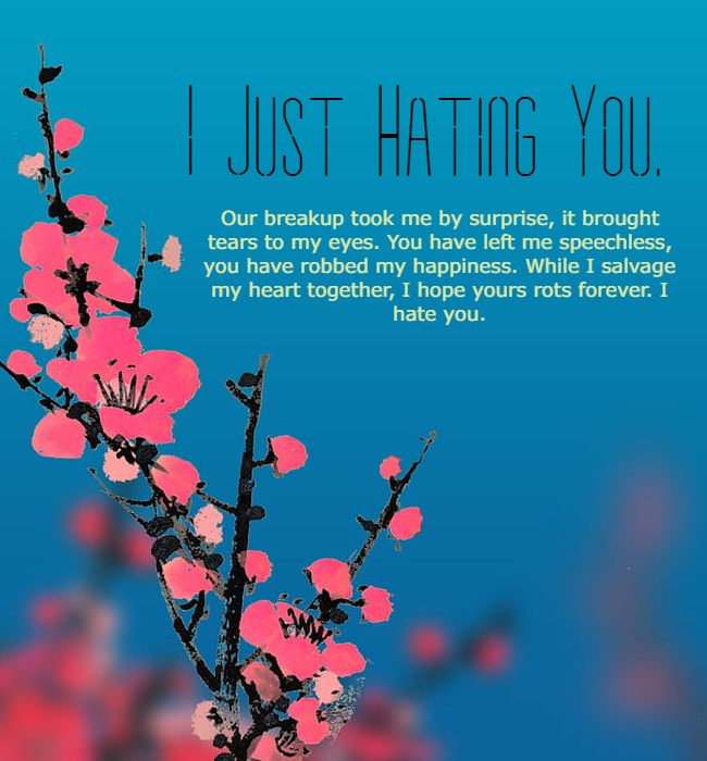 hate quotes for bf